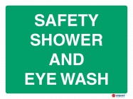 4616 Safety Shower And Eye Wash