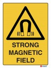4076 Strong Magnetic Field